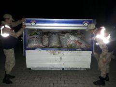 Çaldıran ve Muradiye'de 5 bin 500 kilo balık ele geçirildi