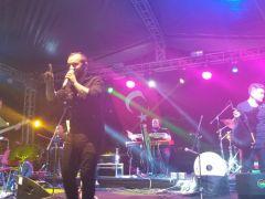 Erciş'te 9. Uluslararası İnci Kefal Göçü Kültür ve Sanat Festivali