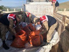 Jandarma ekipleri balık nöbetinde