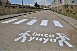 Tuşba'da 'Öncelik Hayatın, Öncelik Yayanın' çizgi çalışması