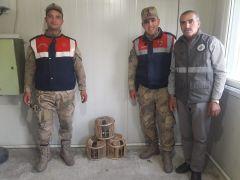 Kaçak avlanmış 3 kınalı keklik ele geçirildi