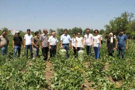 Antalyalı çiftçilerden Gevaş'a ziyaret