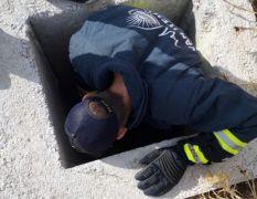 Çukura düşen yavru köpeği itfaiye ekipleri kurtardı