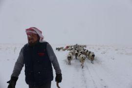 Gürpınar'da tipide mahsur kalan 2 çoban ve koyun sürüsü belediye ekipleri tarafından kurtarıldı