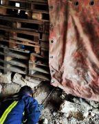 Tahta paletlerin altında sıkışan köpek itfaiye tarafından kurtarıldı