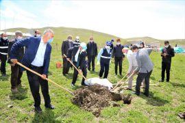 Tuşba Belediyesinden 'Model Ceviz Bahçesi' projesi