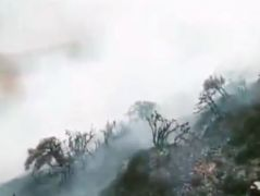Çatak'ta korkutan yangın