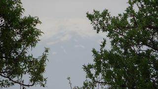 Temmuz ayında Süphan Dağı'na kar yağdı