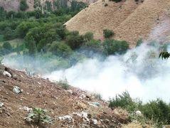 Bahçesaray'da makilik alanda yangın