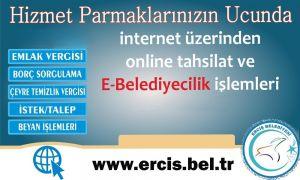Erciş Belediyesi online ödeme sistemine geçti