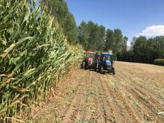İpekyolu Belediyesi üretimden hasada çiftçilerle kol kola