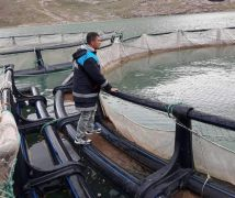 Tarım ve Orman Bakanlığından su ürünleri desteği