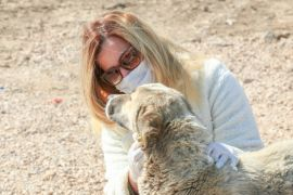 İpekyolu Belediyesi sokak hayvanlarını unutmadı