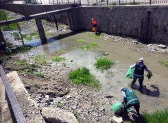 Van Büyükşehir Belediyesinden balık göçü temizliği