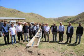 Tuşba Belediyesinden bölge hayvancılığına büyük destek